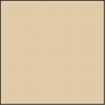 Farbkonversionsfilter 81D